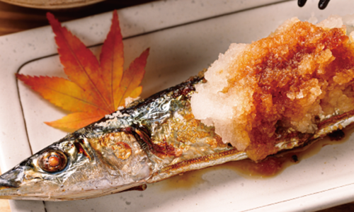 雑賀 純米吟醸 雄町 ひやおろし(9月) このお酒に合うお料理:さんま・あゆの塩焼き、江戸前すし、光り物の押しずし など