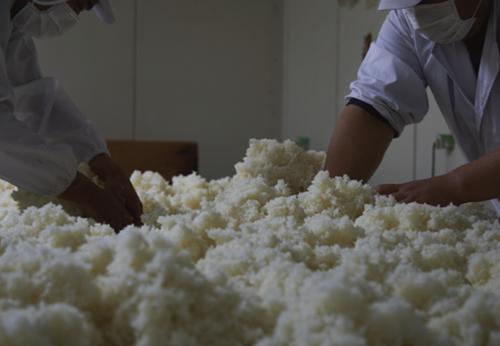 米を活かす技を磨きぬき、他にない、より良い酒を追求。